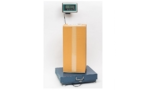 Picture for category Heavy Duty Scales